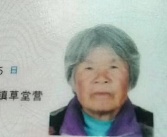 急寻西安72岁老太杨秀侠草堂营村,2017-10-26走失