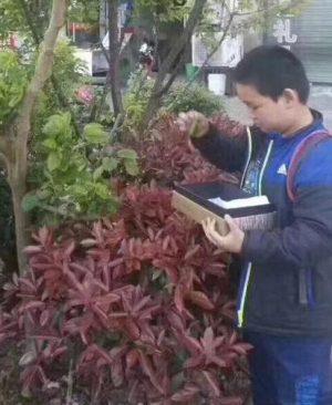 紧急寻找宁波男孩王晨鸣,2017-11-17宁波朱雀新村走失