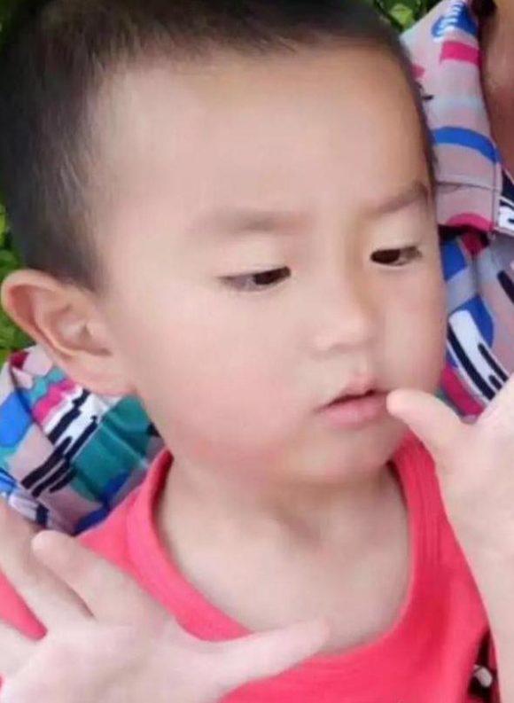 急寻揭阳男童林嘉平 2017/11/4 葵潭镇陂美村的庵滕山场走失
