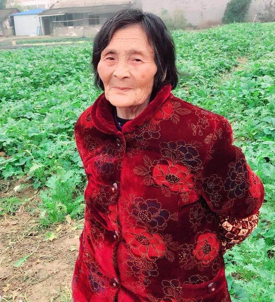 寻找长沙老人杨求玉 2018年2月22日长沙县黄兴镇走失