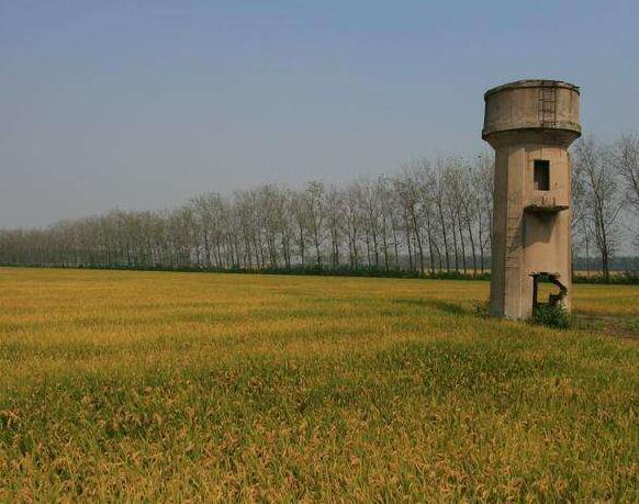 寻40年前上海崇明跃进农场走失的 张文彦